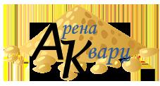 Арена Кварц Logo